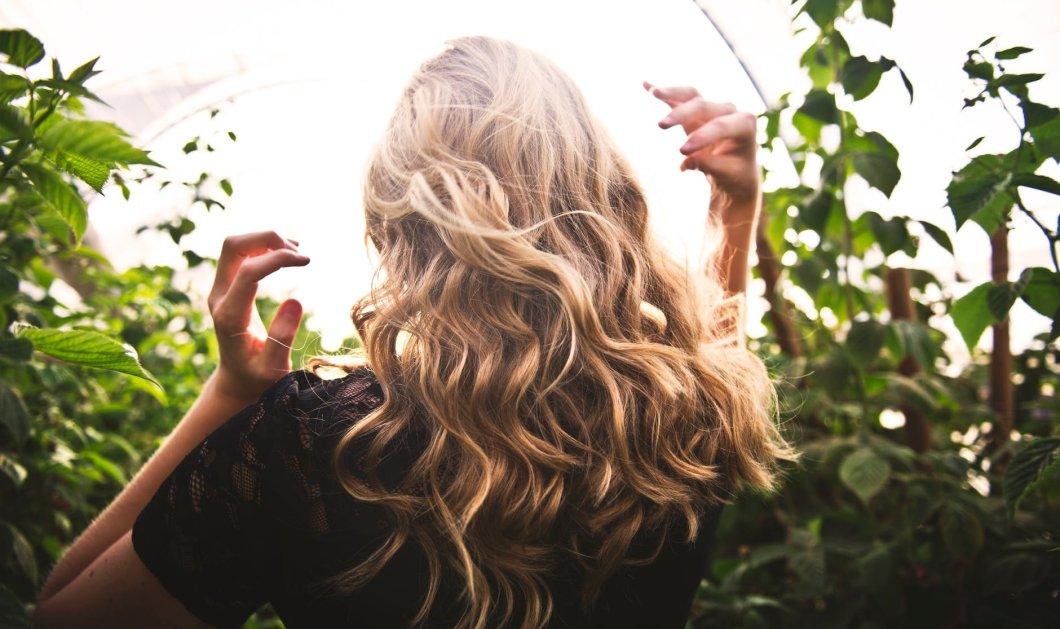 Αυτά τα 7 έλαια αντιμετωπίζουν όλα τα προβλήματα των μαλλιών σας - Έλαιο Καρύδας, Άργκαν, Αβοκάντο  - Κυρίως Φωτογραφία - Gallery - Video