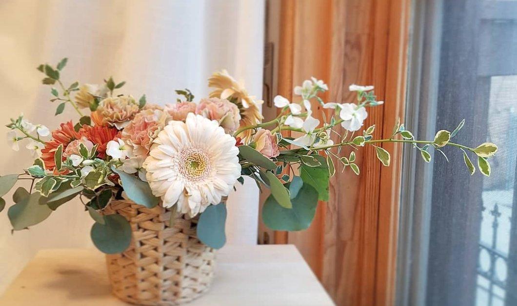 Λουλούδια του φθινοπώρου για να ανθοστολίσετε με μοναδικό τρόπο κάθε γωνιά του σπιτιού σας – Καλό Φθινόπωρο - Κυρίως Φωτογραφία - Gallery - Video