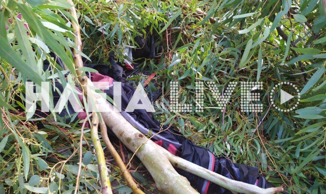 Ανεμοστρόβιλος στην Ηλεία: Βρετανίδα τουρίστρια τραυματίστηκε σοβαρά σε κάμπινγκ - Έπεσε πάνω της δέντρο (φωτό) - Κυρίως Φωτογραφία - Gallery - Video