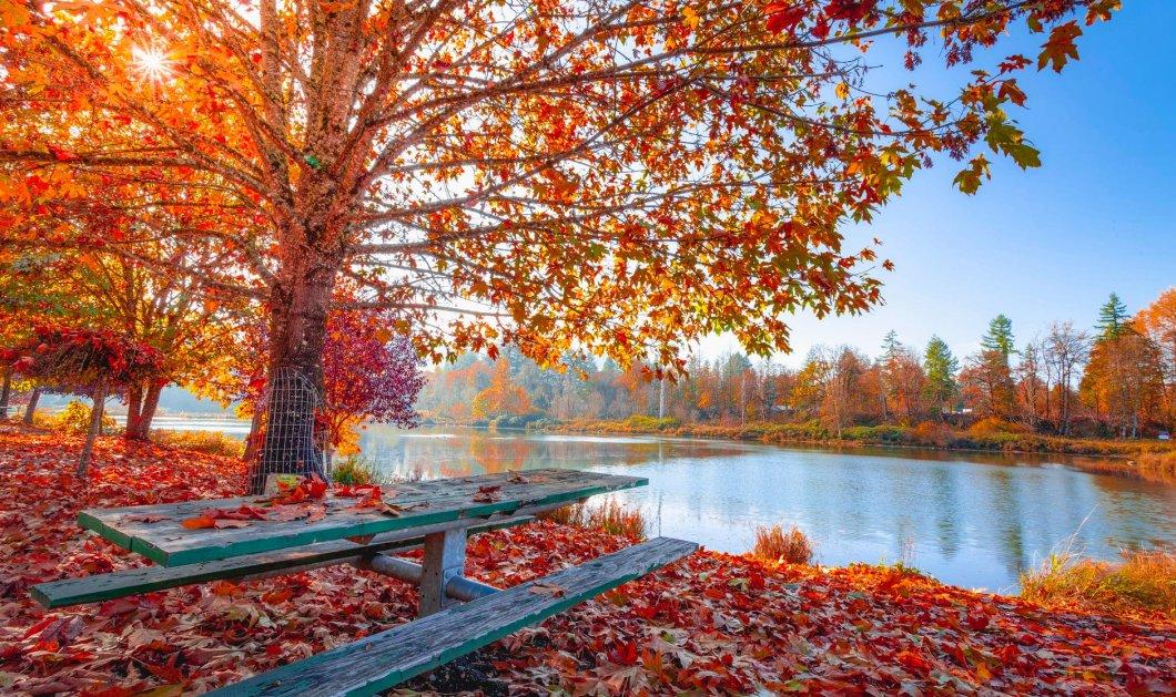 33 πράγματα που μας κάνουν ευτυχισμένους το Σεπτέμβριο - Καλό μήνα! - Κυρίως Φωτογραφία - Gallery - Video
