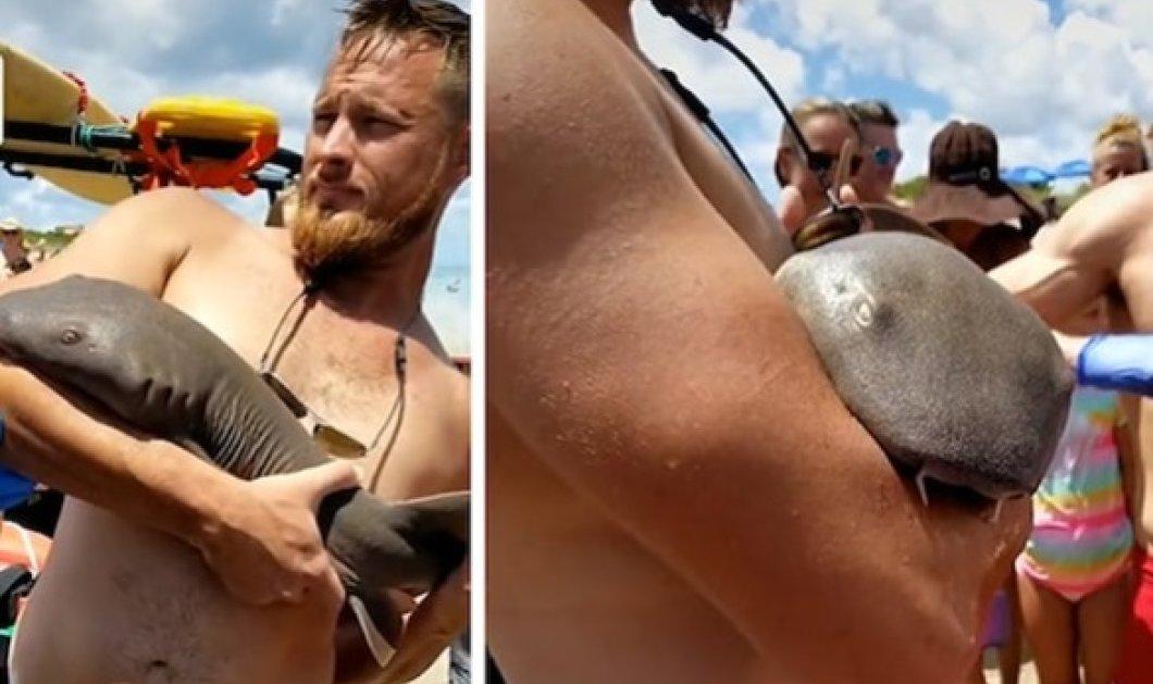 Καρχαρίας δάγκωσε άντρα μέσα στη θάλασσα: Εκείνος βγήκε τραβώντας τον σαν μωρο στη στεριά - Περίμενε 45 λεπτά να τον σώσουν (βίντεο) - Κυρίως Φωτογραφία - Gallery - Video