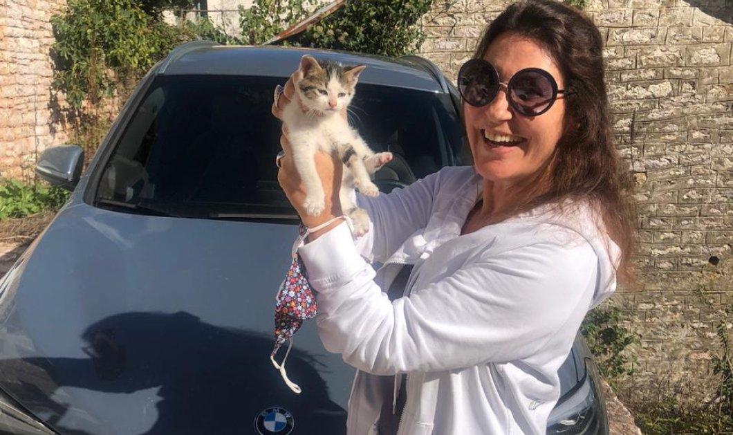 Έκανα test drive με την BMW Χ1 για Καρπενήσι - Καρέ καρέ η διαδρομή μέσα στη φύση, τα φαγοπότια & ο γάτος (φωτό - βίντεο) - Κυρίως Φωτογραφία - Gallery - Video