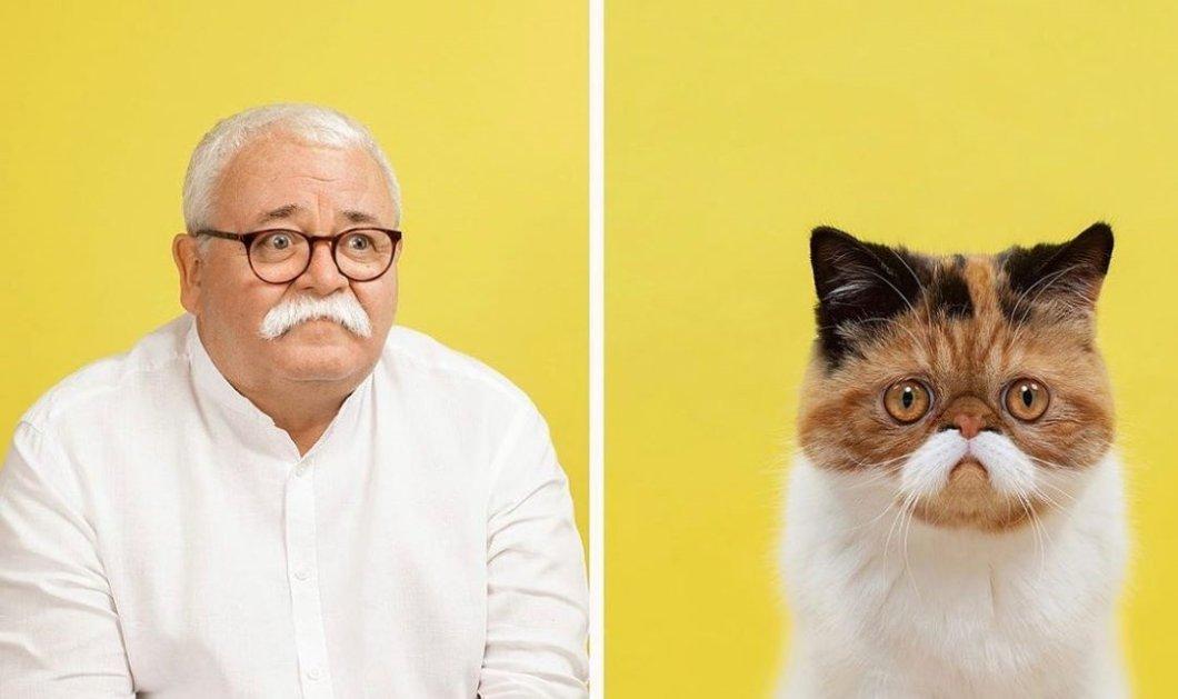 Καλοοοό!!! Φωτογράφισε άνδρες & γυναίκες με στυλ & ασορτί γάτες! Το αποτέλεσμα θεϊκό!  - Κυρίως Φωτογραφία - Gallery - Video