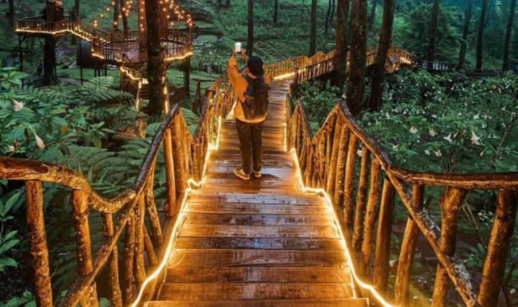 Παραμυθένια φωτισμένη γέφυρα - Ανακαλύψτε το μαγικό δάσος στην Ινδονησία (φωτό) - Κυρίως Φωτογραφία - Gallery - Video