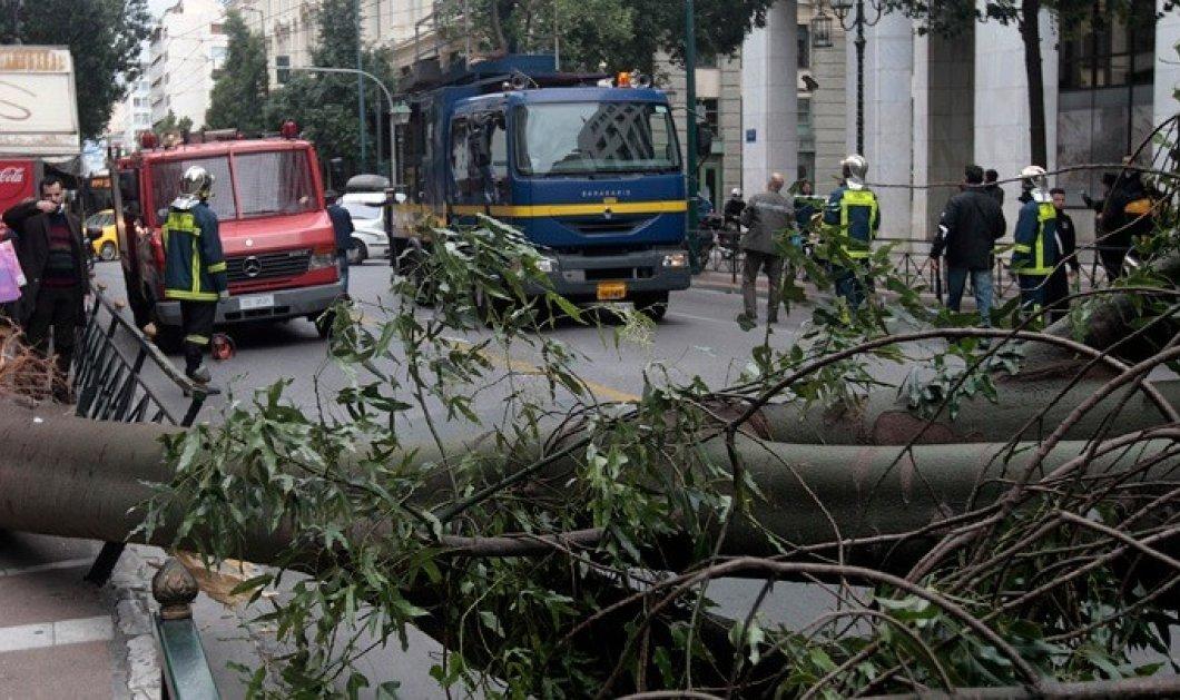 Ξημερώματα θρίλερ για την Αθήνα από την ισχυρή καταιγίδα: Κεραυνοί, αστραπές πλημμύρες σε 125 σπίτια & καταστήματα (Φωτό & Βίντεο)  - Κυρίως Φωτογραφία - Gallery - Video