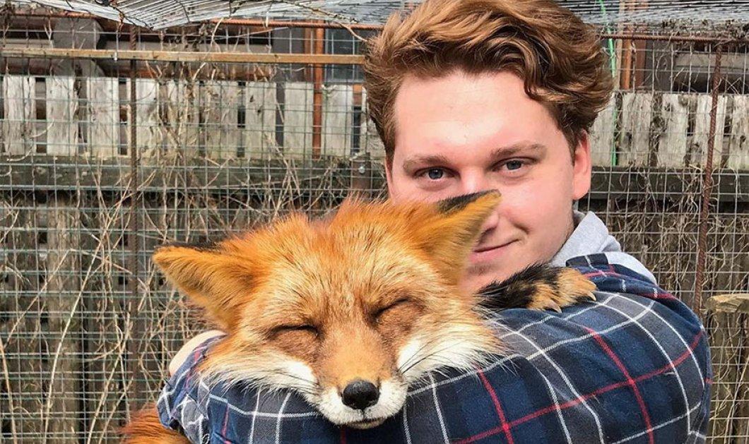 Η ιστορία του νεαρού που λάτρεψε μια αλεπού & έγιναν οικογένεια – 61 φωτογραφίες από τη σχέση αγάπης  - Κυρίως Φωτογραφία - Gallery - Video