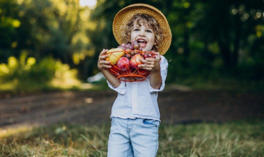 Παιδικό Πρωινό & Δεκατιανό: Η καλή μέρα από το πρωινό φαίνεται - Θέστε γερά θεμέλια στη διατροφή των παιδιών σας - Κυρίως Φωτογραφία - Gallery - Video
