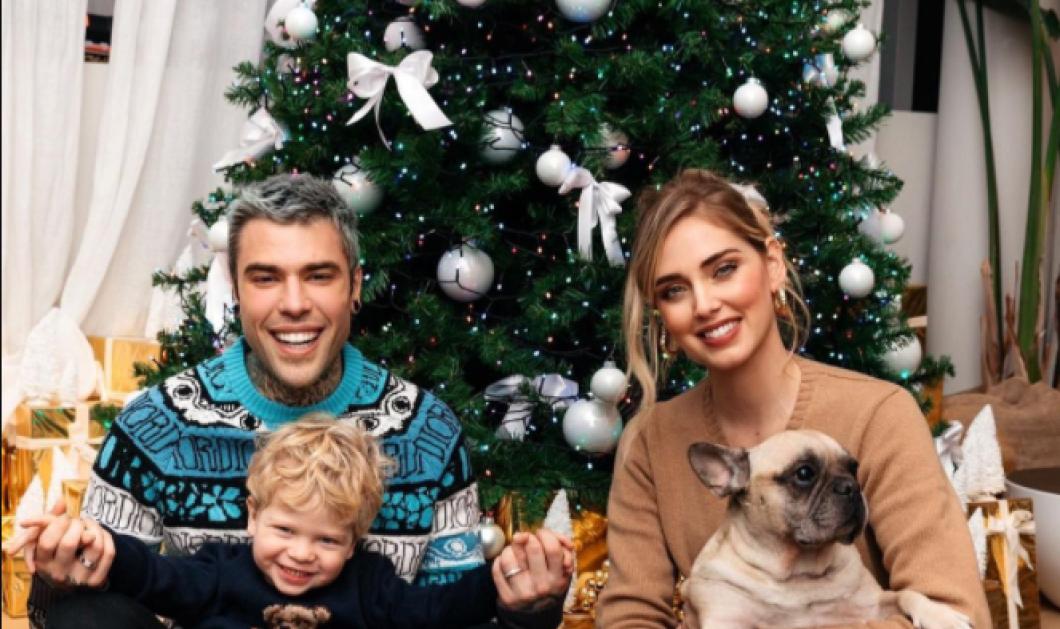 Τα ζώδια και το Χριστουγεννιάτικο δέντρο - Πως αγαπούν να το στολίζουν - Κυρίως Φωτογραφία - Gallery - Video