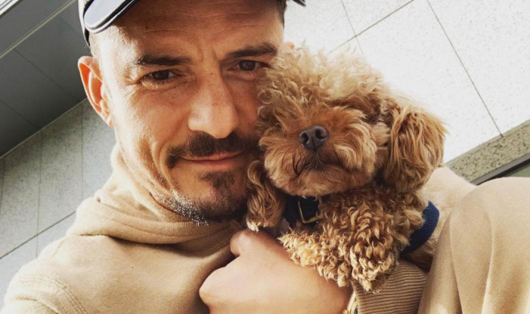 Ορλάντο Μπλουμ: Χριστουγεννιάτικες ευχές αγκαλιά με τους 3,4,5 σκύλους του (φωτό) - Κυρίως Φωτογραφία - Gallery - Video