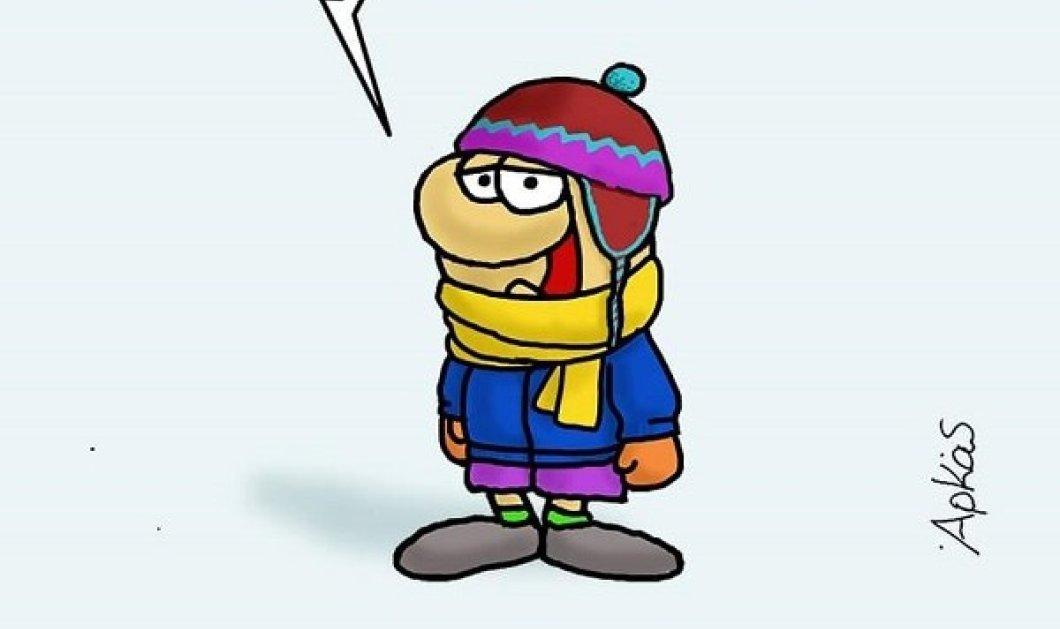 Ο Αρκάς μας λέει καλημέρα: Κρύο!... πολύ κρύο! - Κυρίως Φωτογραφία - Gallery - Video