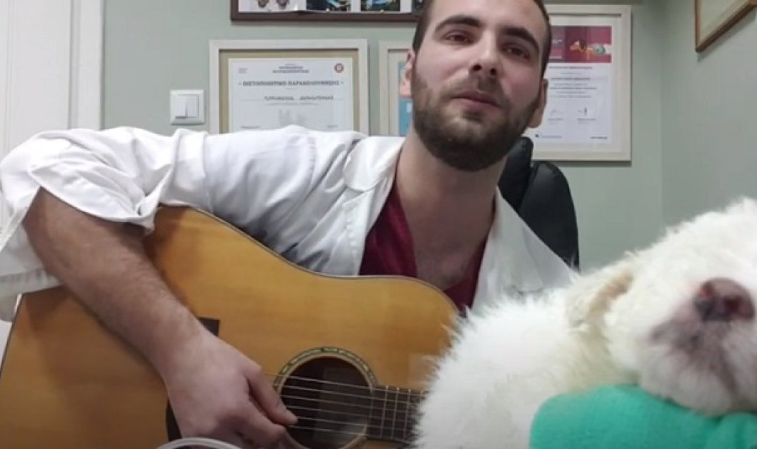 Ο Θάνος είναι κτηνίατρος 30 ετών: Παίζει με την κιθάρα του και τραγουδάει στα αδέσποτα (βίντεο) - Κυρίως Φωτογραφία - Gallery - Video