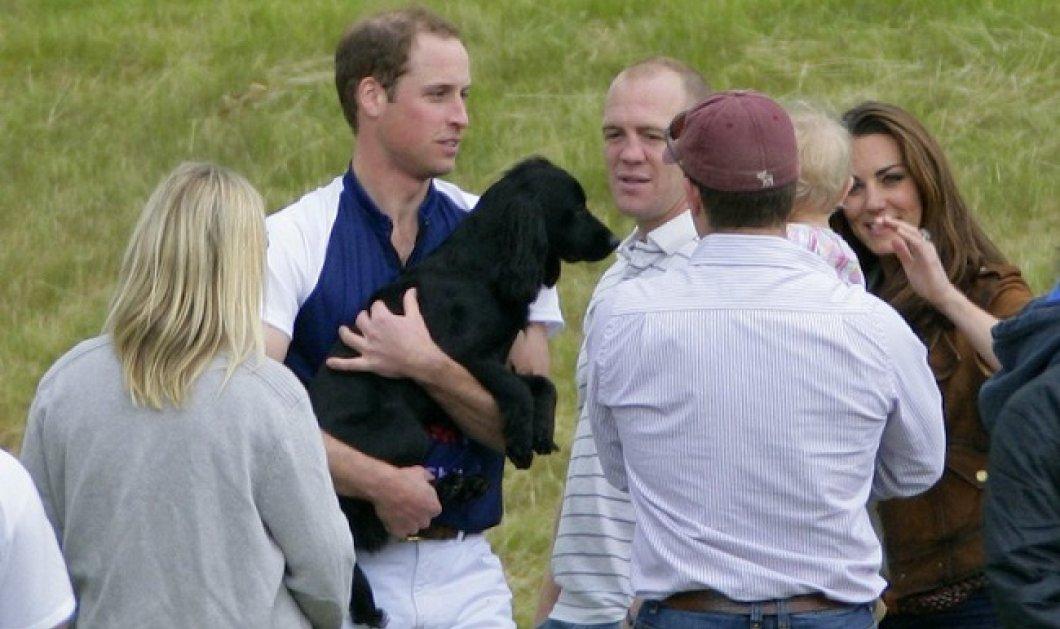 Νέο μέλος στην οικογένεια του πρίγκιπα Γουίλιαμ και της Κέιτ Μίντλετον - Υιοθέτησαν ένα κουταβάκι, μετά τον θάνατο του Lupo (φωτό) - Κυρίως Φωτογραφία - Gallery - Video