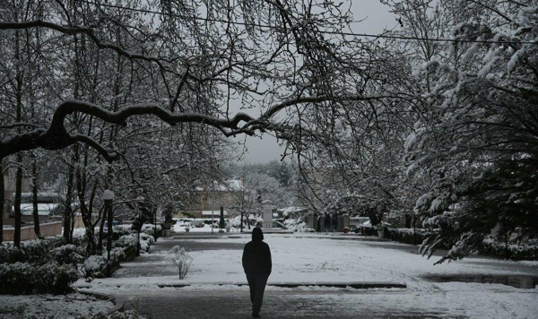 Οι μετεωρολόγοι προειδοποιούν: Πολικό ψύχος προ των πυλών - Θα πέσει κατακόρυφα η θερμοκρασία, χιόνια ακόμα και στις πόλεις (βίντεο) - Κυρίως Φωτογραφία - Gallery - Video