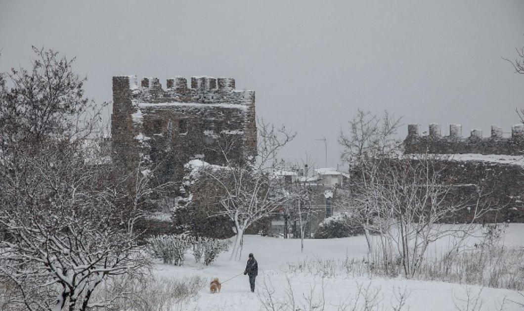 Κλέαρχος Μαρουσάκης: Από την Άνοιξη στην βαρυχειμωνιά - Έρχεται χιονοκακοκαιρία που θα θυμίσει τον Μάρτιο του 1987 (βίντεο) - Κυρίως Φωτογραφία - Gallery - Video