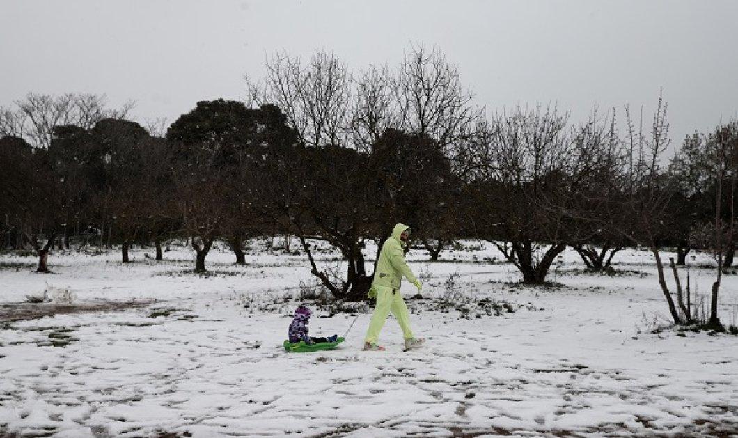 Έκτακτο δελτίο από την ΕΜY: Θα ενταθούν οι χιονοπτώσεις στην Αττική από το απόγευμα - Πώς εξελίσσεται η κακοκαιρία - Κυρίως Φωτογραφία - Gallery - Video