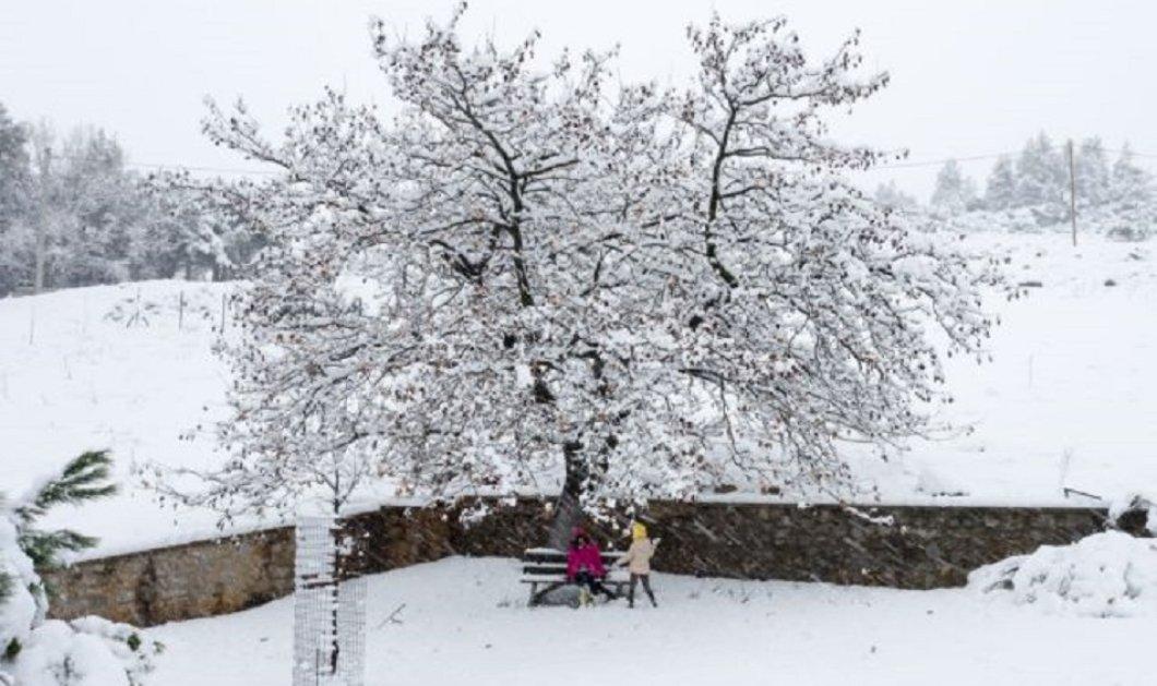 """Οι φάσεις της κακοκαιρίας """"Μήδεια"""" καρέ -καρέ: Αναμένεται πολικό ψυχός & χιόνια - Πτώση της θερμοκρασίας έως 13-15 βαθμούς (χάρτες)  - Κυρίως Φωτογραφία - Gallery - Video"""