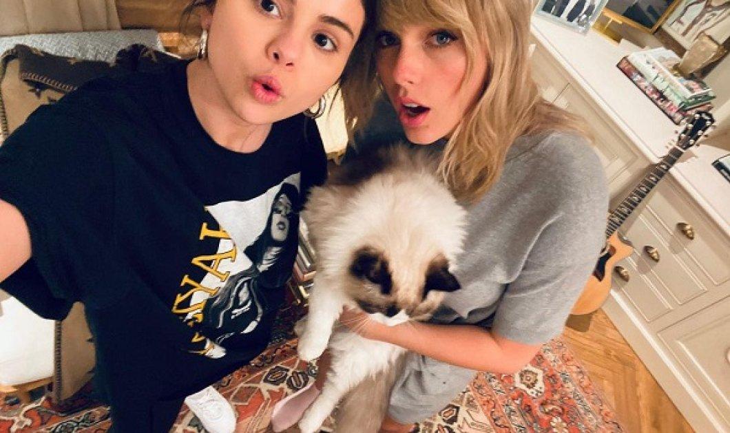 Όταν η Selena Gomez & η Taylor Swift έβγαλαν selfies στο σπίτι μαζί με τον γάτο Benjamin Button: «Σαν να μου έλειψε αυτή» (φωτό) - Κυρίως Φωτογραφία - Gallery - Video