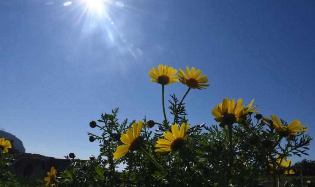 Καλός ο καιρός σήμερα Παρασκευή με άνοδο της θερμοκρασίας - Που θα βρέξει;  - Κυρίως Φωτογραφία - Gallery - Video