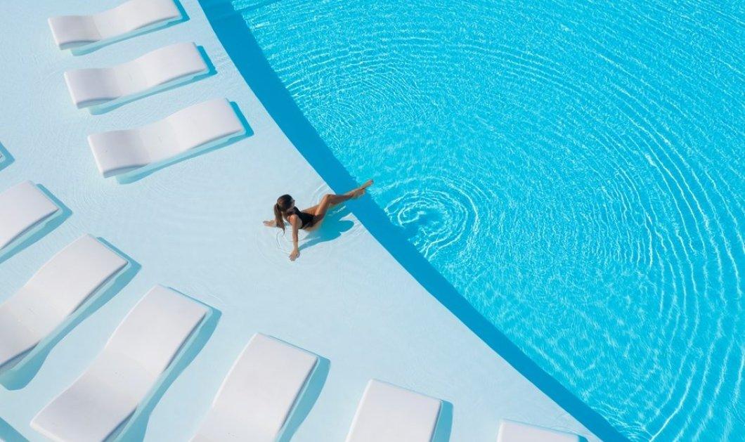 """Ο Τραστέλης με τη """"Σπονδή"""" & τη  """"Hytra""""  πάνε Πόρτο Χέλι - """"Κόκκινο χαλί"""" στη γαστρονομική εμπειρία του στο 5αστερο  Nikki Beach Resort & Spa Porto Heli (φώτο) - Κυρίως Φωτογραφία - Gallery - Video"""