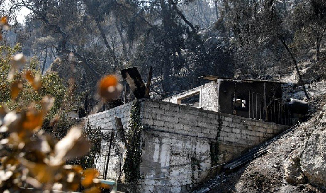 Φωτιά στα Γεράνεια Όρη - Πέτσας: Οικονομική στήριξη των πληγέντων με 600 ευρώ - μέχρι 6.000 ευρώ για οικοσκευές (βίντεο) - Κυρίως Φωτογραφία - Gallery - Video