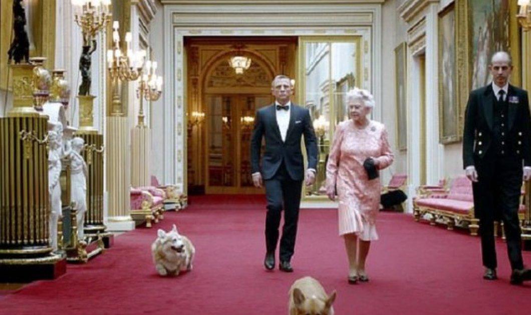 """Νέα απώλεια για τη βασίλισσα Ελισάβετ - Ένα από τα αγαπημένα της σκυλιά πέθανε - Ήταν η """"παρηγοριά"""" της στις δύσκολες ώρες που περνά (φώτο) - Κυρίως Φωτογραφία - Gallery - Video"""