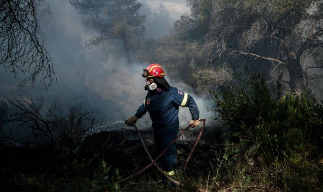 """Αναζωπύρωση της φωτιάς στα Μέγαρα Αττικής - Πυροσβεστική: """"Για προληπτικούς λόγους η απομάκρυνση κατοίκων από τους οικισμούς Παπαγιαννέϊκα & Καλκάνι - Κυρίως Φωτογραφία - Gallery - Video"""