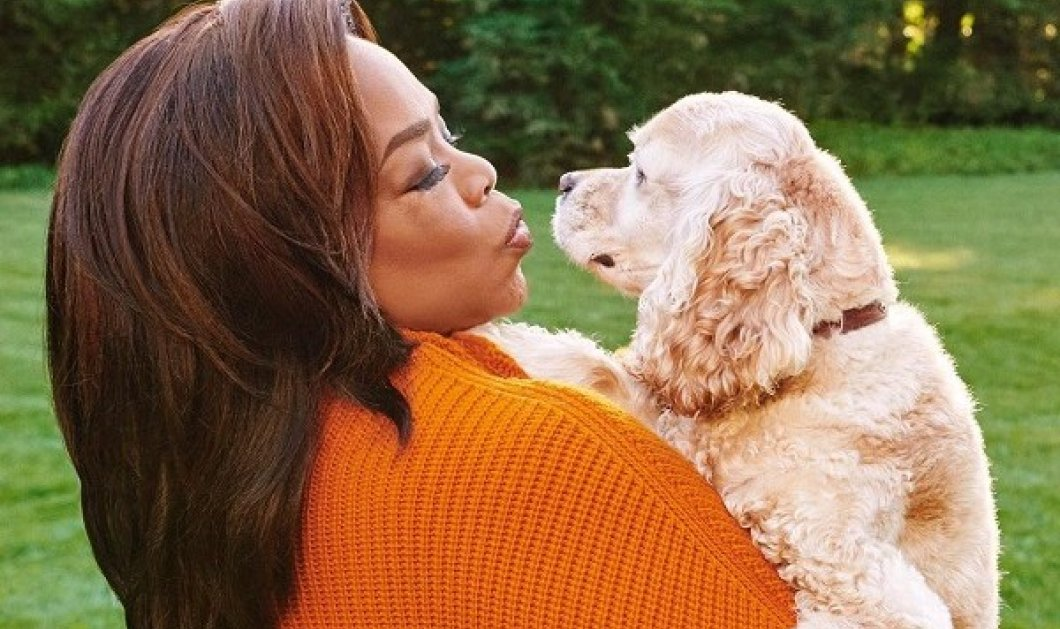 Celebrities που υιοθέτησαν αδέσποτα: 10 σκυλιά η Ariana Grande! - ένα νέο κουταβάκι για την Jennifer Aniston (φωτό) - Κυρίως Φωτογραφία - Gallery - Video
