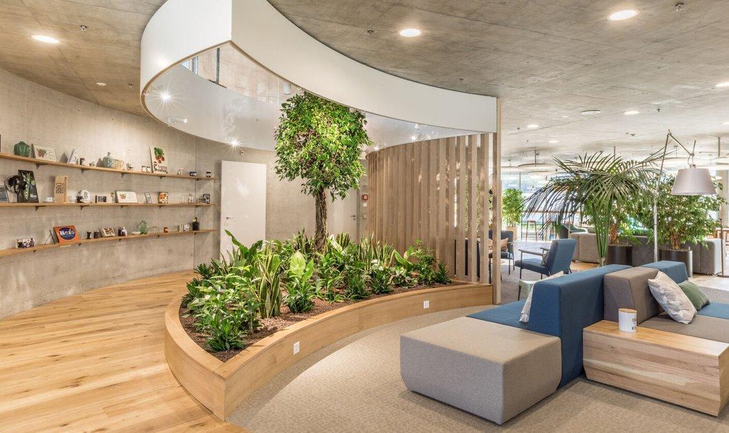Biophilic Design: Η τοπ τάση στη διακόσμηση σας συνδέει με τη φύση - υπόσχεται χώρο  με υψηλή αισθητική & ευεξία (φώτο) - Κυρίως Φωτογραφία - Gallery - Video