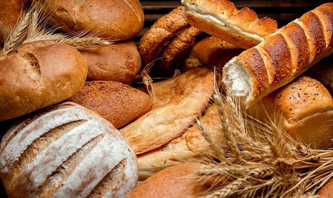 Ψωμί και διατροφή: Τι ισχύει τελικά; Ποιο να επιλέξετε & πόσο να φάτε - Κυρίως Φωτογραφία - Gallery - Video