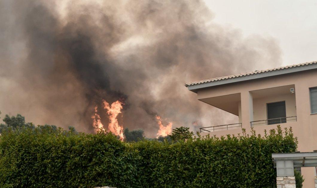 Εικόνες που φέρνουν δάκρυα στα μάτια από την ανεξέλεγκτη φωτιά στην Αττική - Εκκενώθηκαν Ροδόπολη & Σταμάτα - Πυρκαγιά στο Σούνιο (φώτο)  - Κυρίως Φωτογραφία - Gallery - Video