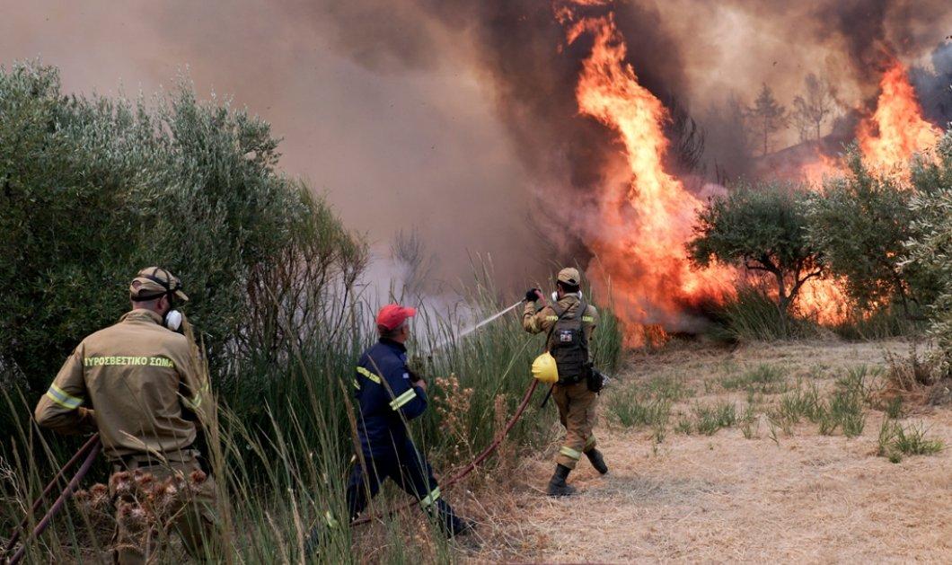 Τιτάνια μάχη με τις φλόγες στην Πάρνηθα - Στη ΜΕΘ του ΚΑΤ δύο εθελοντές πυροσβέστες  - Κυρίως Φωτογραφία - Gallery - Video
