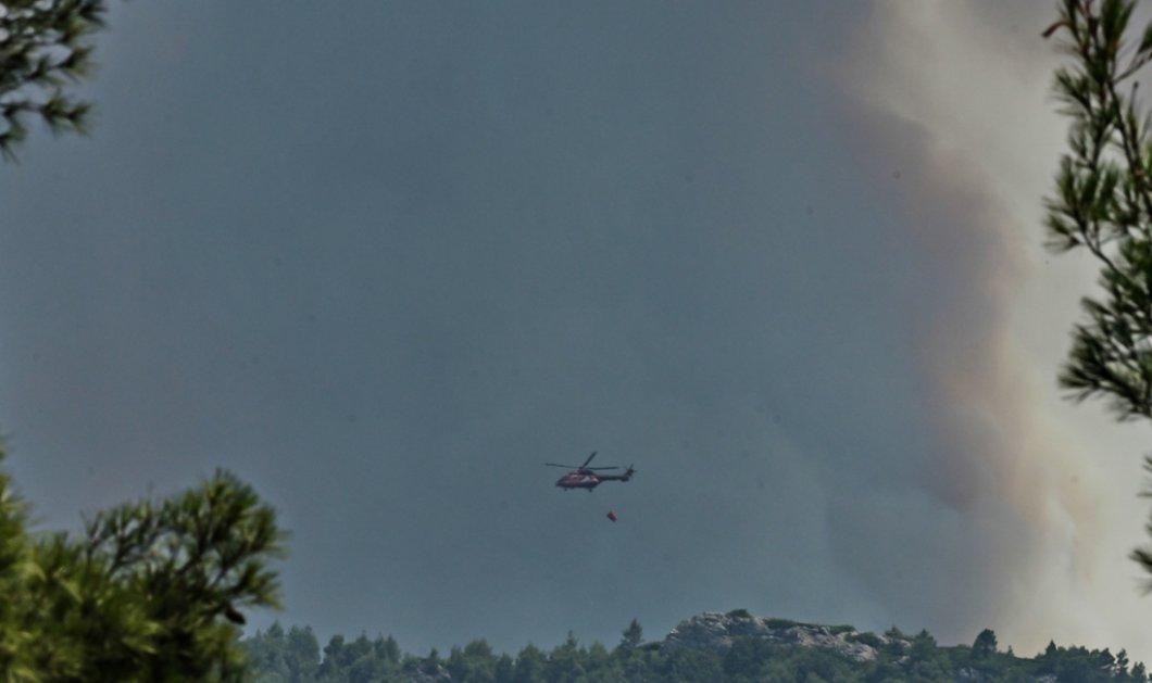 Τραγωδία χωρίς τέλος: Τριπλή αναζωπύρωση της φωτιάς στη Βαρυμπόμπη - Το ένα μέτωπο κοντά στα βασιλικά κτήματα - Εκκενώνονται Ιπποκράτειος Πολιτεία & Δροσοπηγή (φώτο-βίντεο) - Κυρίως Φωτογραφία - Gallery - Video