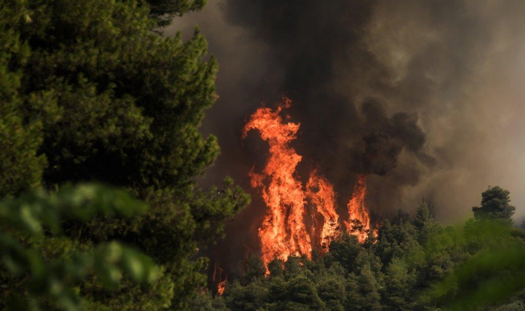 Δραματική η κατάσταση στην Εύβοια - Σε κατάσταση έκτακτης ανάγκης οι κοινότητες Νηλέως & Κηρέως - Εγκλωβισμένοι κάτοικοι σε Κούρκουλους & Σκεπαστή  (φώτο) - Κυρίως Φωτογραφία - Gallery - Video