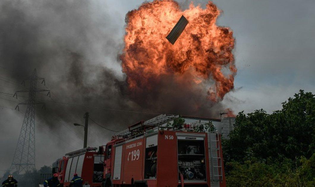 Πυρκαγιά στην Αττική: Εκκενώνονται Καπανδρίτι, Πολυδένδρι, Μαλακάσα - Στις φλόγες οι Αφίδνες και η Ιπποκράτειος Πολιτεία (βίντεο) - Κυρίως Φωτογραφία - Gallery - Video