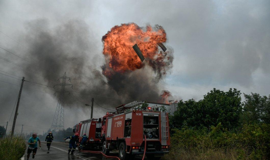 Ανεξέλεγκτη η φωτιά στην Αττική - Έκρηξη σε εργοστάσιο στις Αφίδνες - Παραδόθηκε στις φλόγες το Κρυονέρι - Σοκαριστικές εικόνες & βίντεο  - Κυρίως Φωτογραφία - Gallery - Video
