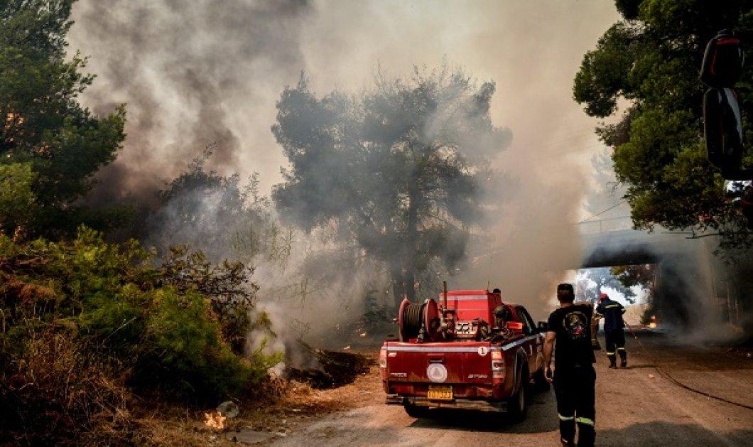Πυρκαγιές: Βελτιωμένη αλλά επικίνδυνη η κατάσταση στην Αττική - Μάχη με τις αναζωπυρώσεις (φωτό & βίντεο) - Κυρίως Φωτογραφία - Gallery - Video
