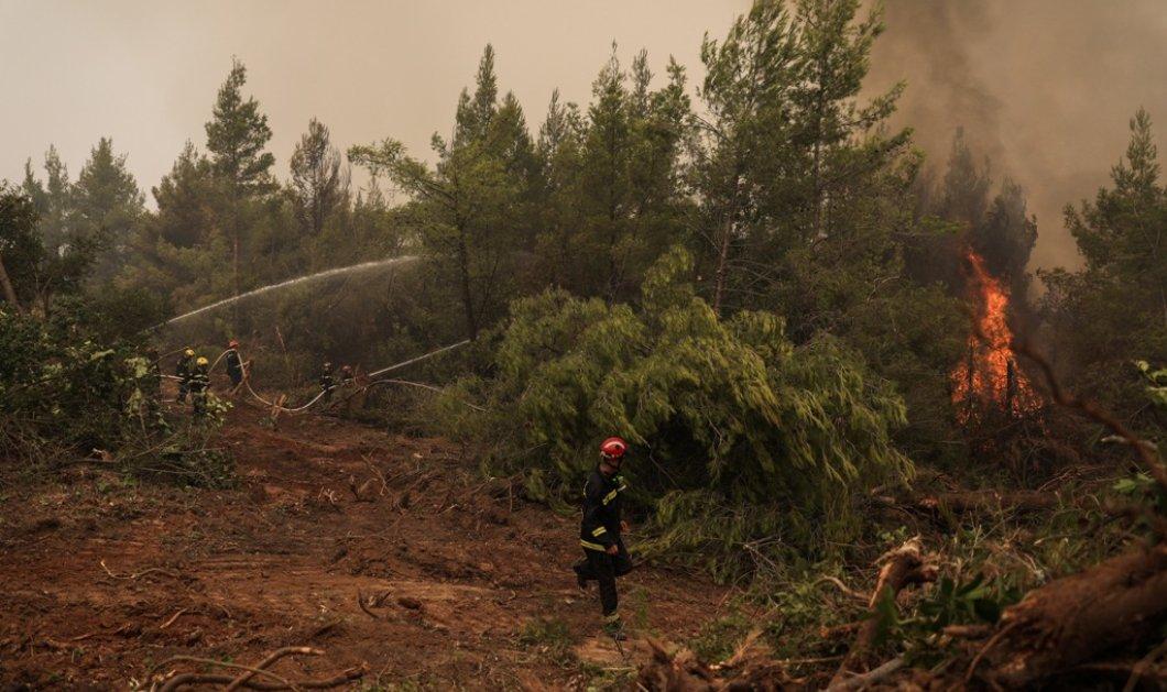 Μεγάλη φωτιά στην Κάρυστο - Εκκενώθηκε το Μαρμάρι & δύο ακόμα οικισμοί (βίντεο)  - Κυρίως Φωτογραφία - Gallery - Video