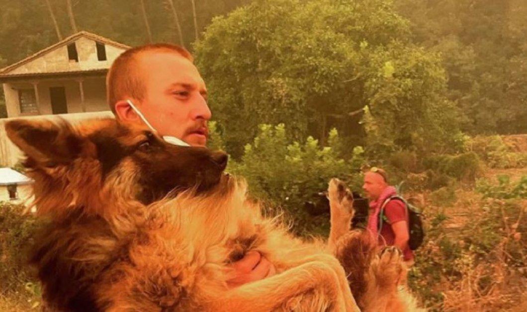 Story of the day: Εθελοντής έσωσε τον σκύλο που είχαν αφήσει δεμένο στην αυλή καιόμενου σπιτιού - Κυρίως Φωτογραφία - Gallery - Video