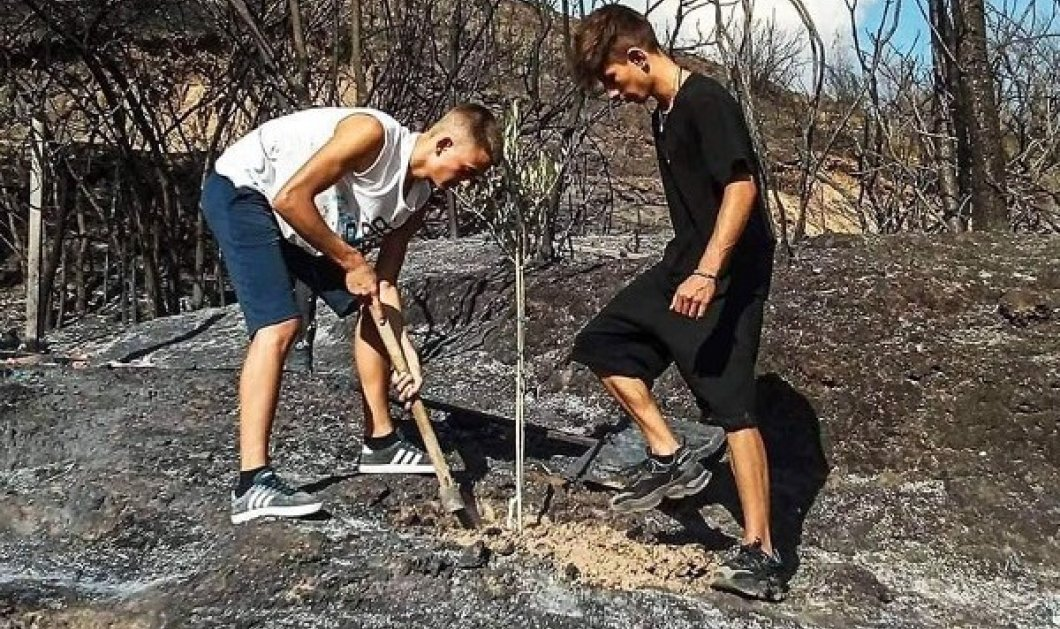 Good news στην Αρχαία Ολυμπία: Το πρώτο δέντρο στα καμένα φύτεψαν δύο 15χρονα αγόρια (φωτό) - Κυρίως Φωτογραφία - Gallery - Video