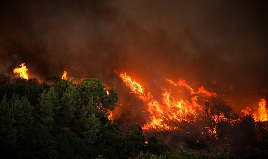 Ν. Χαρδαλιάς: Διάσπαρτες αναζοπυρώσεις στη Βαρυμπόμπη - 76 σπίτια με σοβαρές ζημιές, 12,5 χιλιάδες στρέμματα έχουν καεί  - Κυρίως Φωτογραφία - Gallery - Video