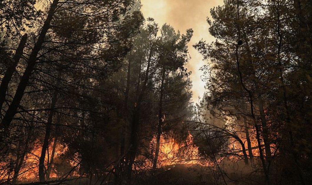 Εύβοια: Μάχη με τις αναζωπυρώσεις-Πύρινο μέτωπο απειλεί το Ασμήνιο-Μήνυμα του 112 για εκκένωση της περιοχής (φωτό - βίντεο) - Κυρίως Φωτογραφία - Gallery - Video
