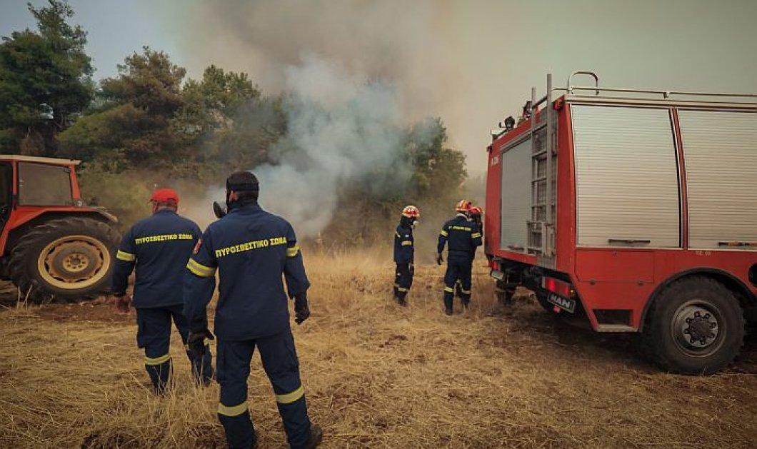 Οι Ένοπλες Δυνάμεις στην μάχη με τις φλόγες - Περιπολίες από ξηρά και επιτήρηση με drones (βίντεο) - Κυρίως Φωτογραφία - Gallery - Video