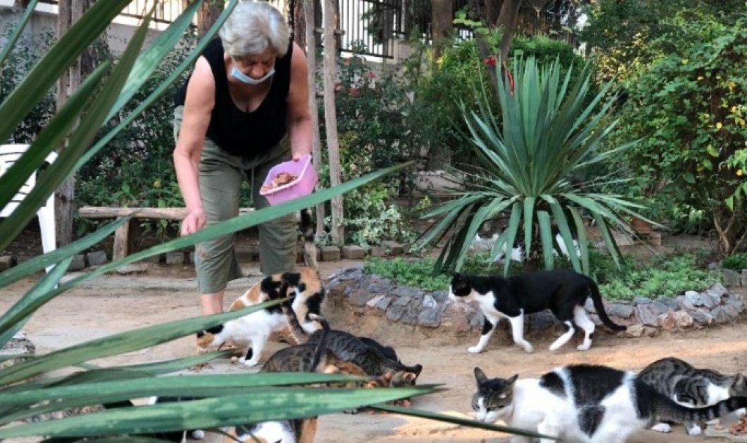 Το πάρκο του μπαρμπα-Γιάννη στην Καλαμαριά: Υιοθετήθηκε από τη γειτονιά όταν ο ίδιος έφυγε από τη ζωή  - Κυρίως Φωτογραφία - Gallery - Video