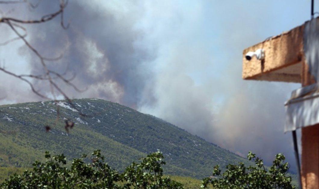 Βίλια: Ανεξέλεγκτη η φωτιά προς το Πεδίο Βολής Μεγάρων – Κάηκαν κτίσματα εκτός οικισμών (βίντεο) - Κυρίως Φωτογραφία - Gallery - Video