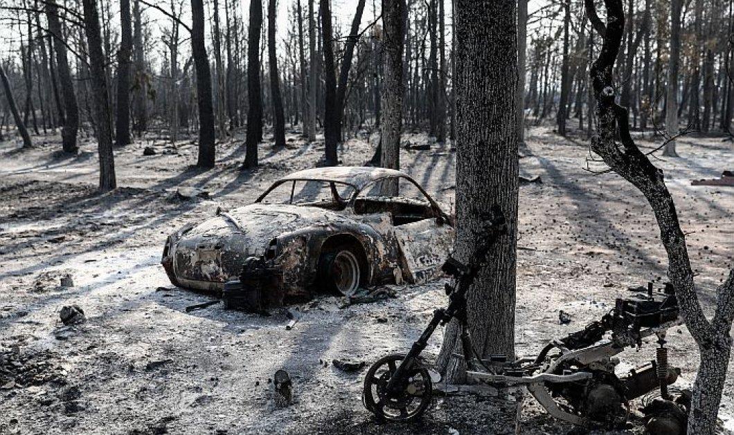 Φωτιά στη Βαρυμπόμπη - Συνταρακτικές εικόνες που κόβουν την ανάσα για την καταστροφή στον πνεύμονα της Αττικής (φωτό - βίντεο) - Κυρίως Φωτογραφία - Gallery - Video