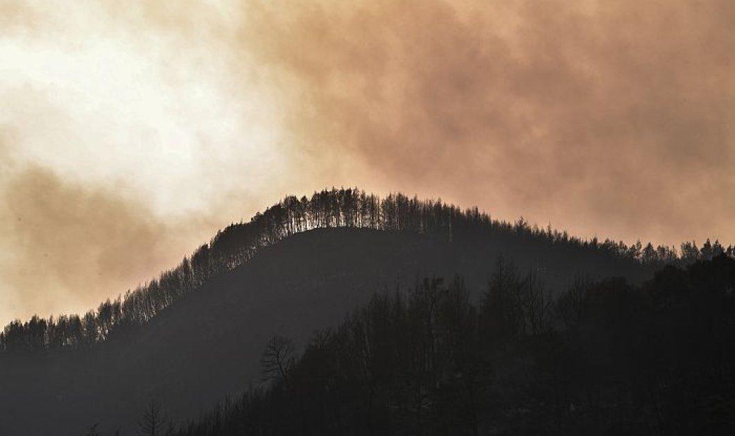 Συνεχίζεται η μάχη σε Εύβοια, Ηλεία-Αρκαδία και Λακωνία - Πυρκαγιές από κεραυνούς σε Μάνδρα και Χαλκιδική - Κυρίως Φωτογραφία - Gallery - Video