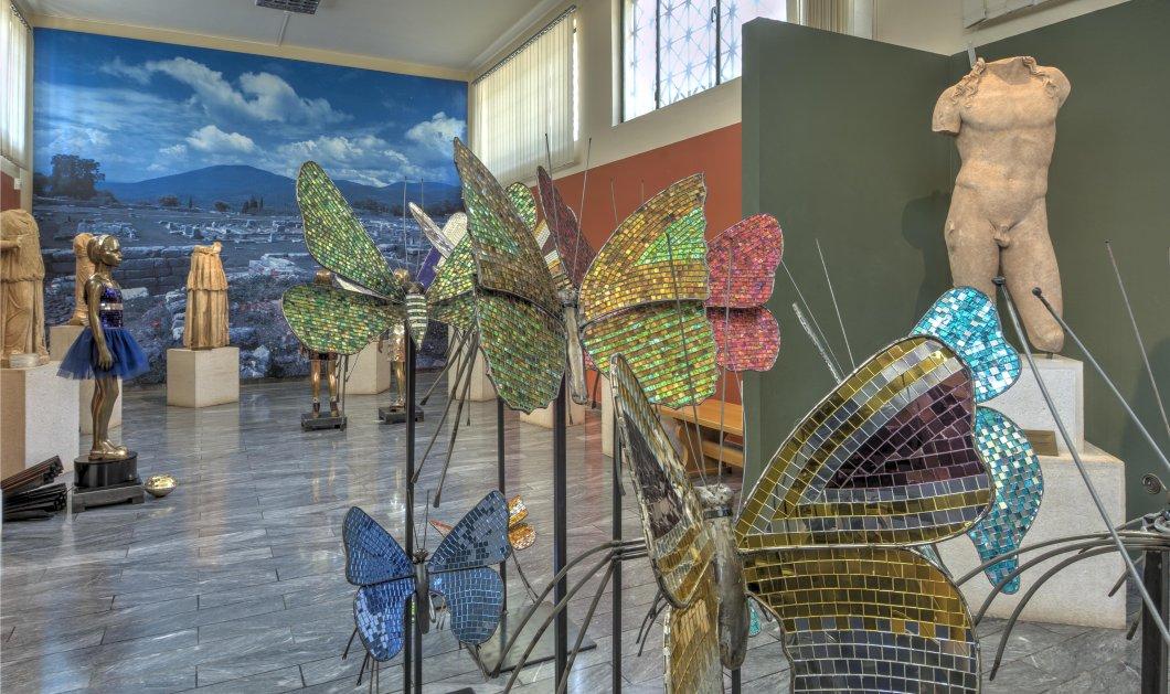 """Οι εκτυφλωτικά λαμπερές πεταλούδες της Αφροδίτης Λίτη """"εισβάλλουν"""" στην Αρχαία Μεσσήνη - Για πρώτη φορά σύγχρονη τέχνη στο Αρχαιολογικό Μουσείο  - Κυρίως Φωτογραφία - Gallery - Video"""