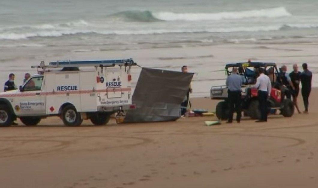 20χρονος surfer έχασε την ζωή του όταν του επιτέθηκε καρχαρίας και τον δάγκωσε στο χέρι - φωτό από την Emerald Beach (βίντεο) - Κυρίως Φωτογραφία - Gallery - Video