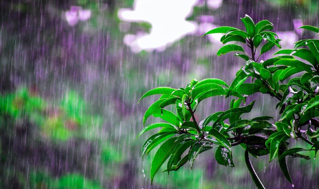 Καιρός: Πτώση της θερμοκρασίας - Βροχές και θυελλώδεις άνεμοι την Τρίτη σε πολλές περιοχές  - Κυρίως Φωτογραφία - Gallery - Video