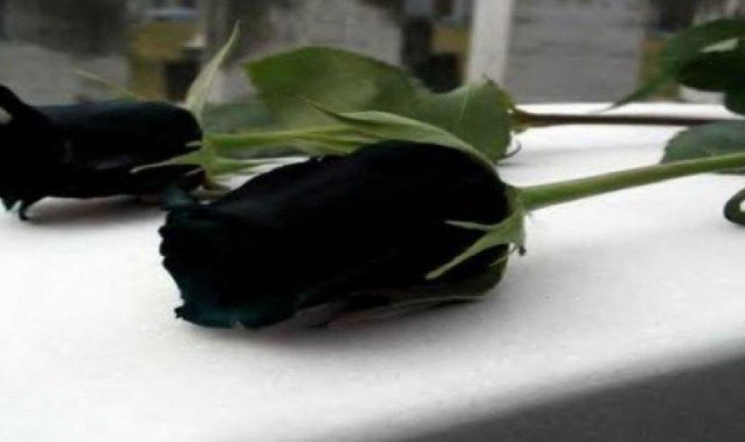 Δράμα στην Κρήτη: 52χρονη καρκινοπαθής πέθανε μία εβδομάδα μετά τον χαμό του 20χρονου παιδιού της σε τροχαίο - Κυρίως Φωτογραφία - Gallery - Video